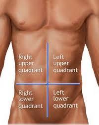 Spieren in het buik gebied
