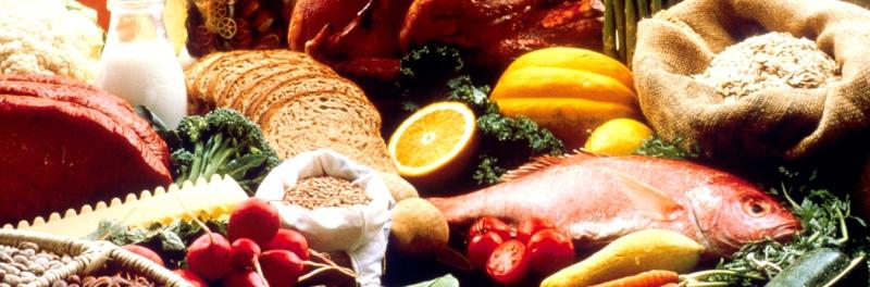 vetverbranding stimuleren om een wasbordje te kweken, gezond eten