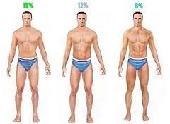 vet percentages diverse stadia sixpack trainen thuis