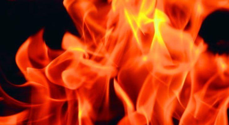 meer vet verbranden
