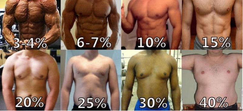 buikspieren trainen thuis, foto's van mannen met verschillende vet percentages van 6% tot 40 %